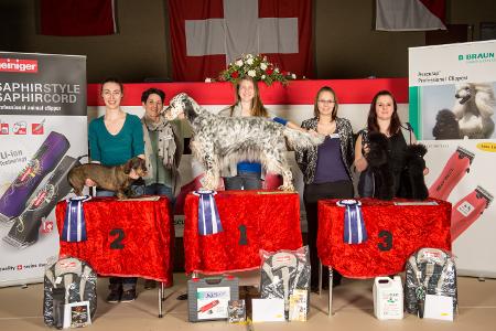 3. Platz Lernende Schweizer Meisterschaft 2016