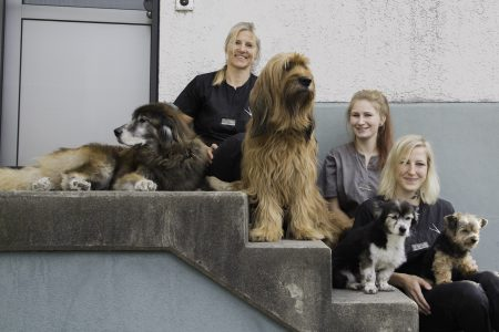 Hundesalon Panda Team